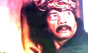 Sexy scene indonesia outstanding example pellicle